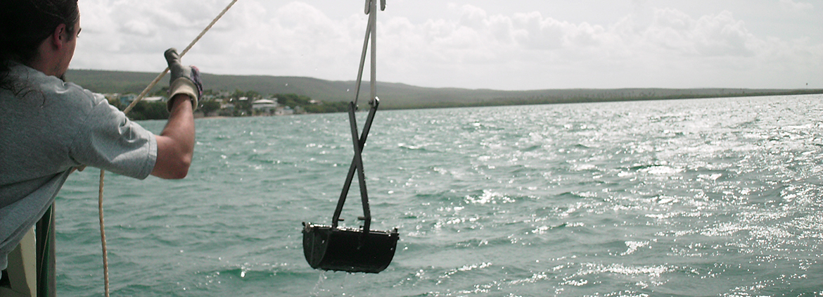 High Levels of Pollutants Found in Sediment in Guánica Bay