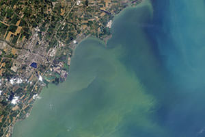 NASA image showing harmful algal bloom in Lake Erie from space