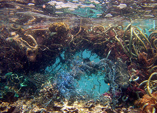image of marine debris in the water