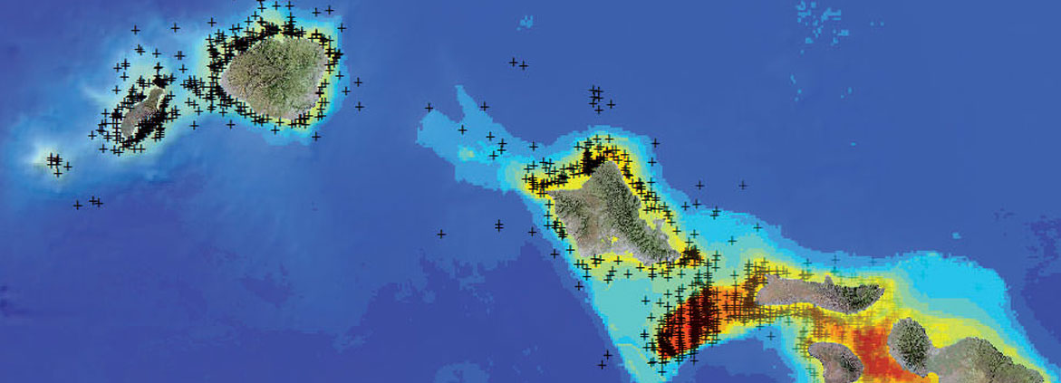 map of whale distribution in Hawaii