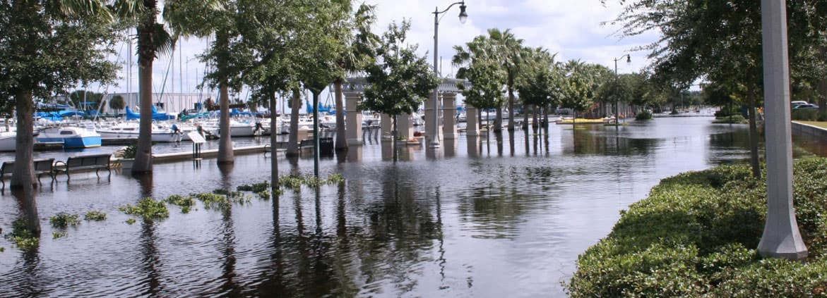 Flooded coastal infrastructure, such as this sidewalk in Florida, is becoming increasingly common as sea levels rise.