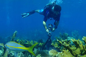 NOAA diver shooting VR photography