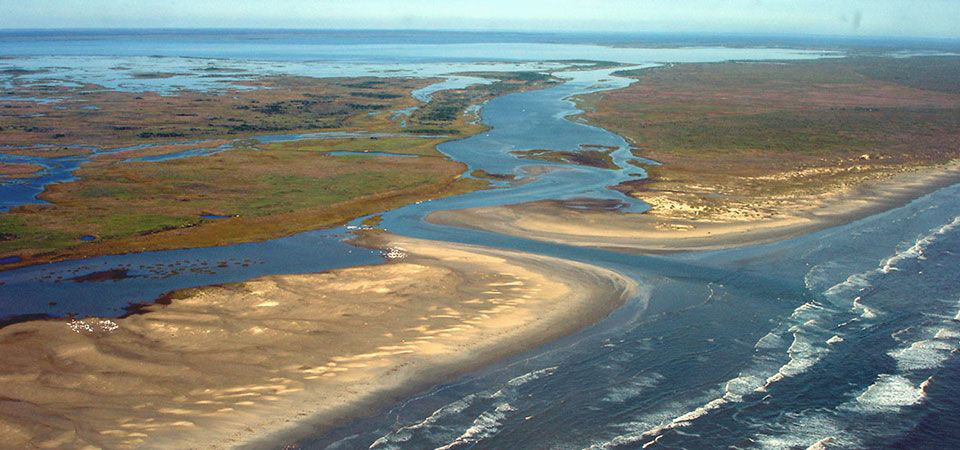 New Study Explores Tidal Marsh Resilience to Sea Level Rise