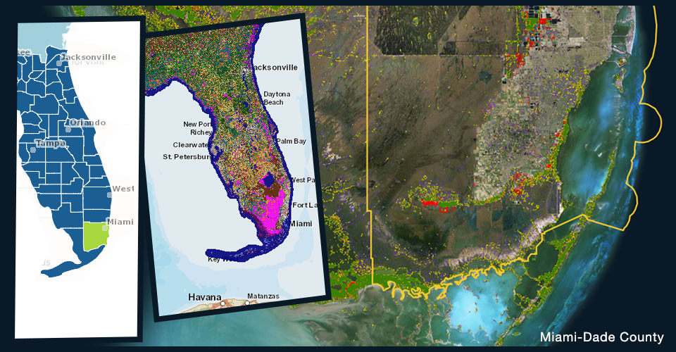 multiple images of land cover over Florida