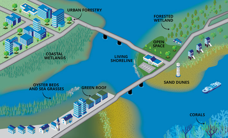 green infrastructure examples shown in infographic