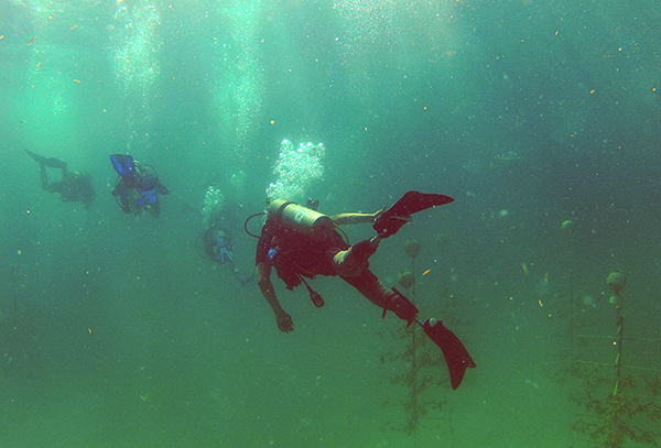 A combat-wounded veteran cares for corals and tests new dive prosthetics in an underwater coral nursery.