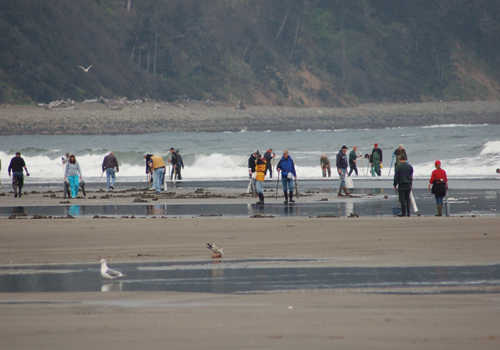 crowd on beach collecting water samples