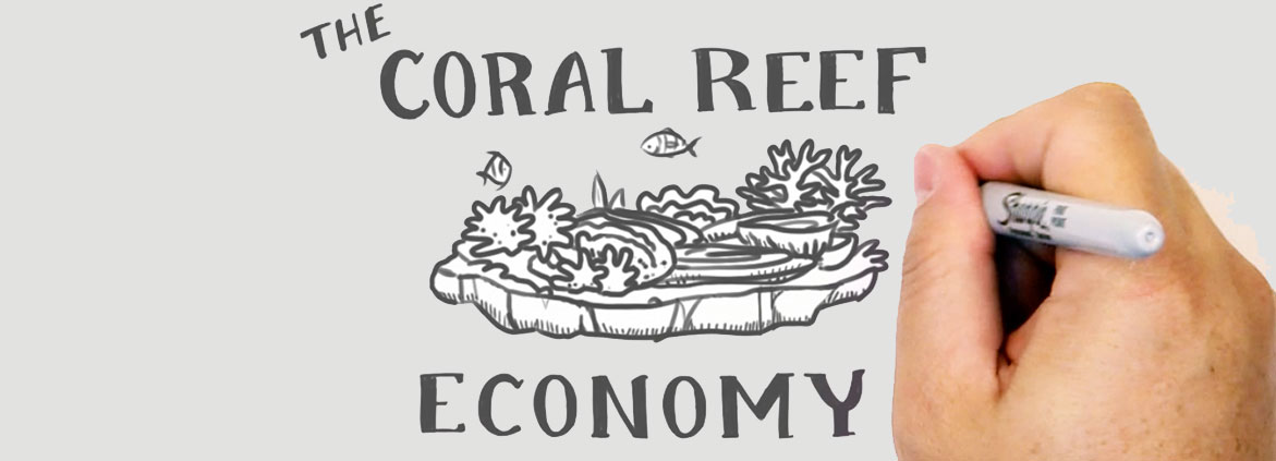 coral reef economy fast draw, showing hand drawing coral reef