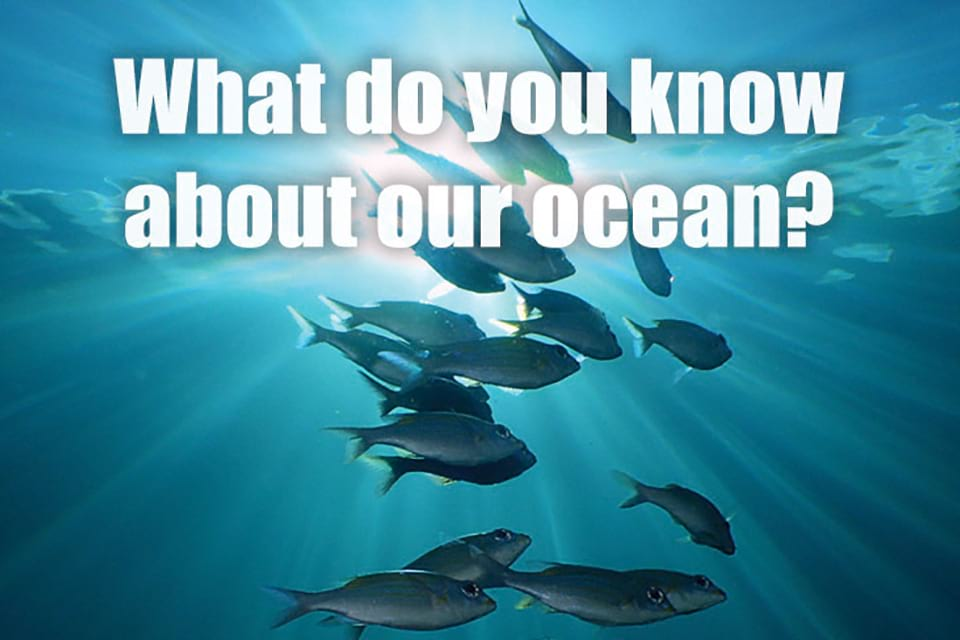 What do you know about our ocean?