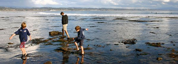 family explores a national marine sanctuary