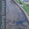 Diving Deeper: Oil Spill Response Revisited