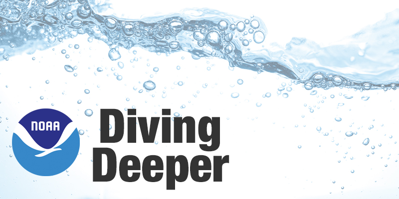 Diving Deeper podcast icon