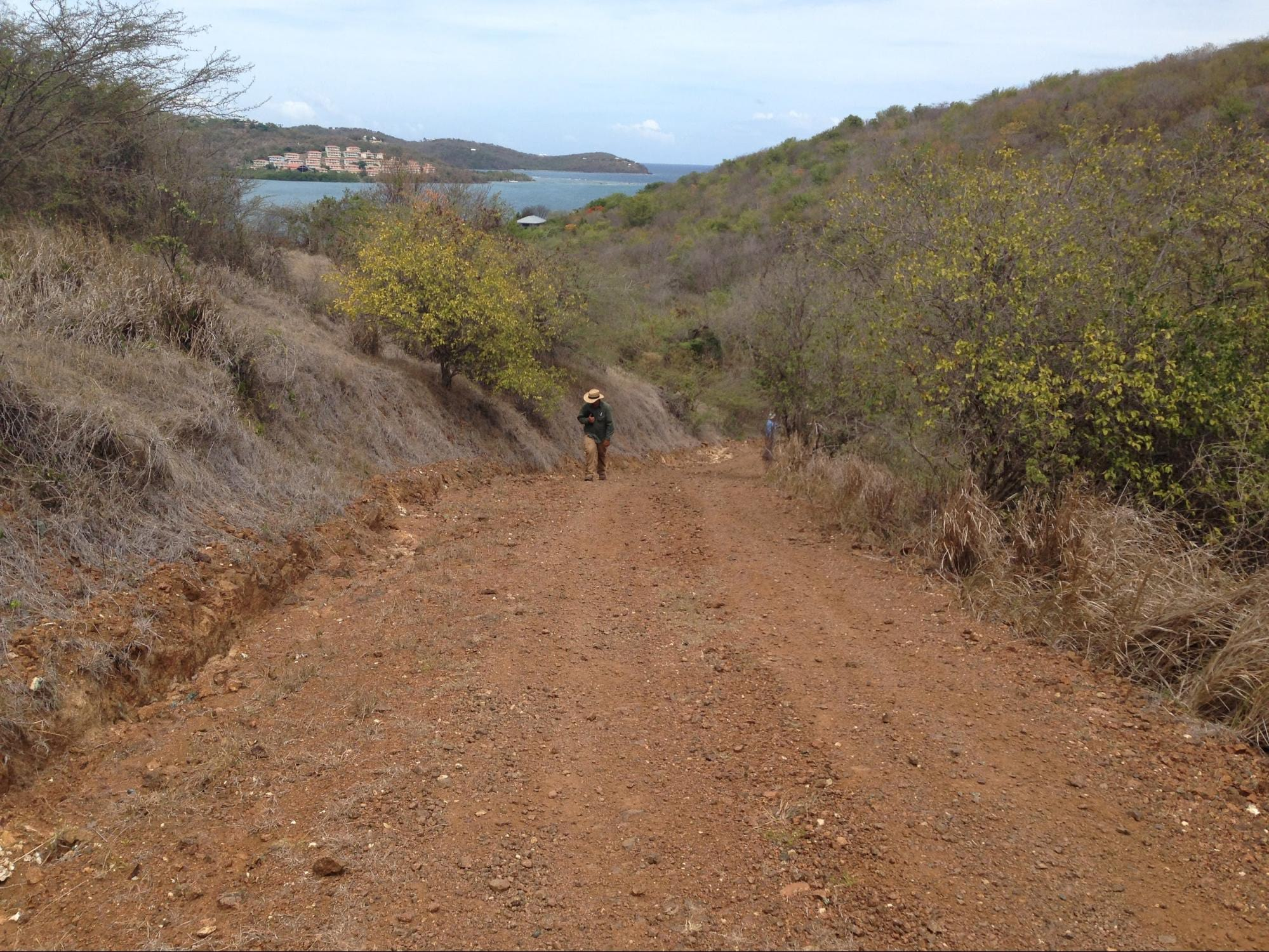 Unpaved road on the island of Culebra. Unpaved roads on the island are significant sources of sediment pollution to nearshore seagrass and coral reef habitats.