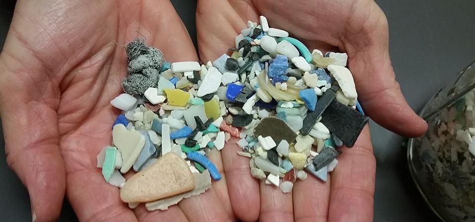 Diving Deeper: Microplastics