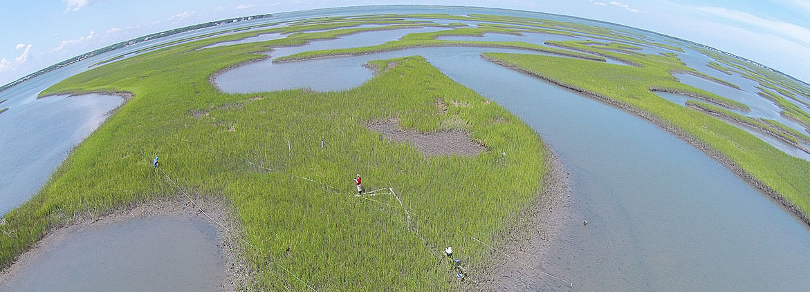 aerial view of Middle Marsh in NC