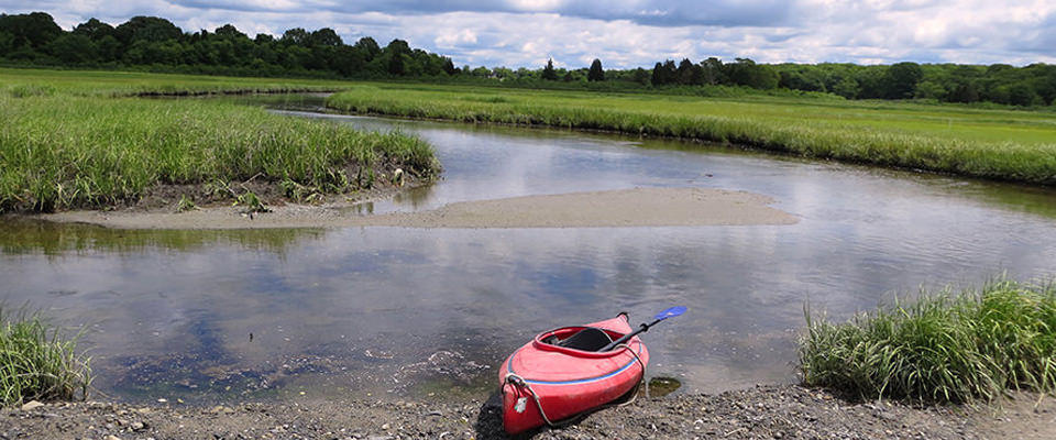 salt marsh with kayak