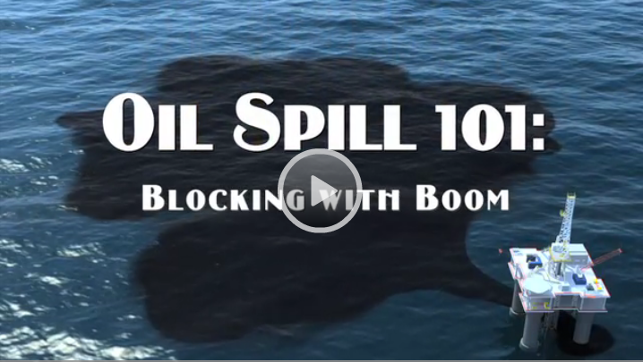 Oil Spill 101: Feathers and Oil