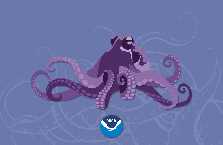 Noaa S National Ocean Service Wallpaper
